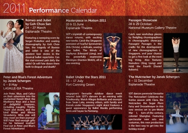 print_sdt-brochure-side2